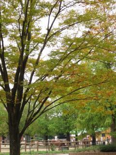 豊橋総合動植物公園 のんほいパーク