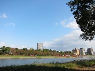 殿橋下流乙川河川緑地