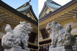 安城神社の狛犬