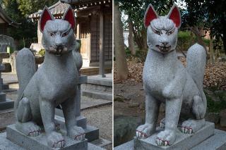 市杵島姫神社の狐