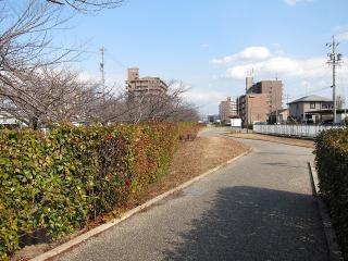 中井筋自転車道