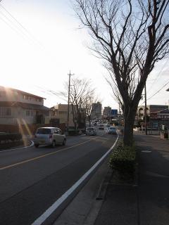 岡崎市 愛知県道326号 桑谷柱線