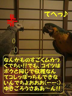 2011010717080000.jpg