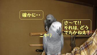 グーちゃん・○2ショット