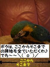 2011052219510000.jpg