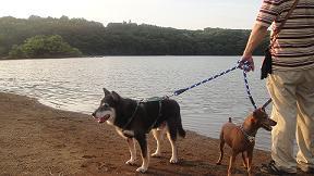一碧湖散策7