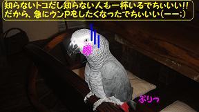 ジットリ○