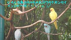 DSC01279.jpg