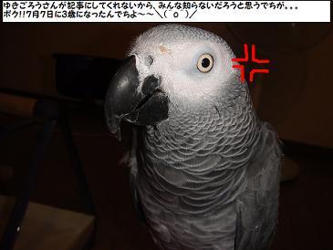 DSC01613.jpg