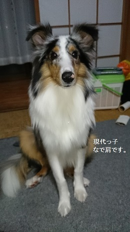 blog_import_53c415cd31a8b.jpg