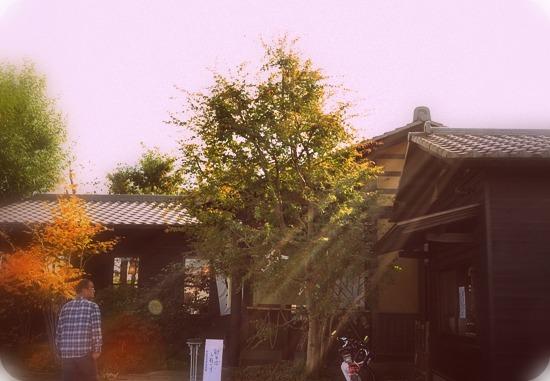 2010.11 ブログ用フォト 001