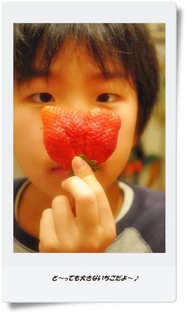ブログ用フォト2011.2 010 - コピー