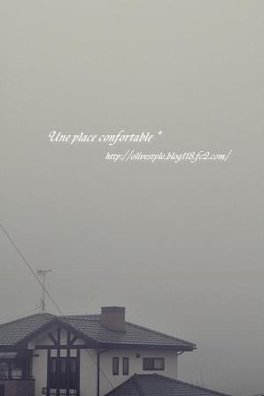 2011.2 ブログ用フォト 005