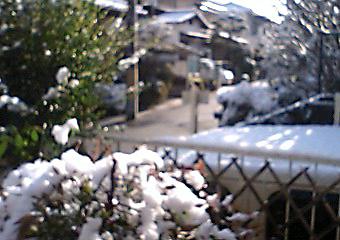 季節外れの雪01