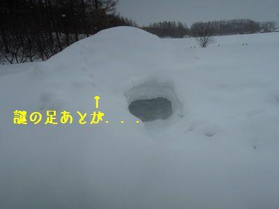 DSCN1627.jpg