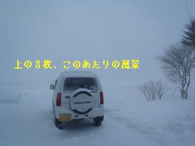 P1030088Z.jpg