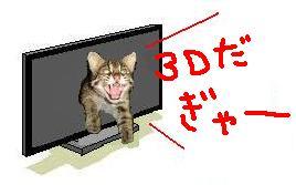 101126-10_20101126232714.jpg