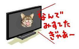 101126-8_20101126232646.jpg