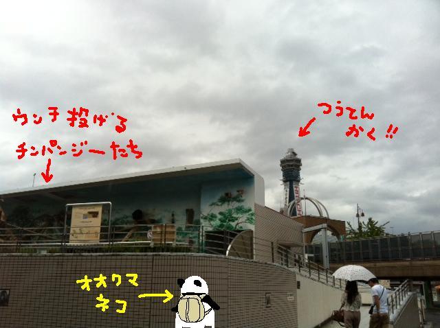 14_20110920111333.jpg