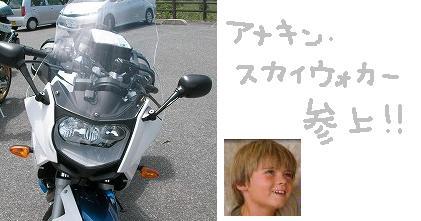 SANY0306_20100531112440.jpg