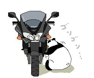Z750S2_20101027135641.jpg