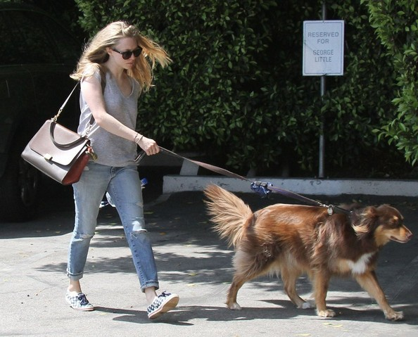 Amanda+Seyfried+Out+Dog+Finn+ItvJ5F4oP0sl.jpg