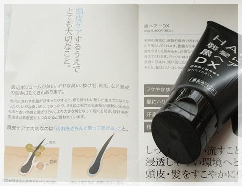 頭皮用パック 黒ヘアーDX