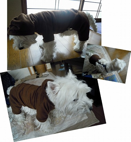 ラグラン袖のフード付き、着せ替えつなぎ服
