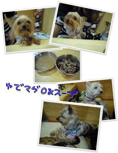 松栄寿司 茹でマグロ&スープ