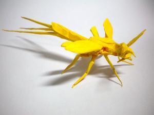 オナガバチ3