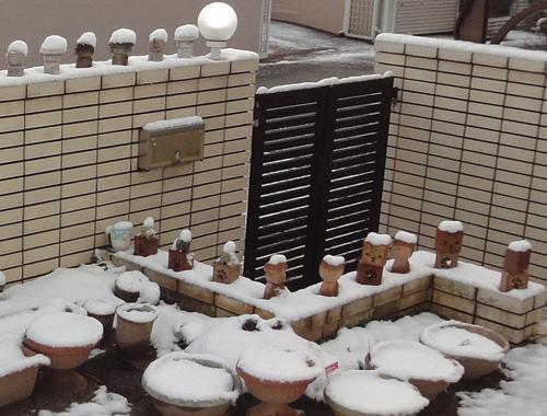 新年に雪2013