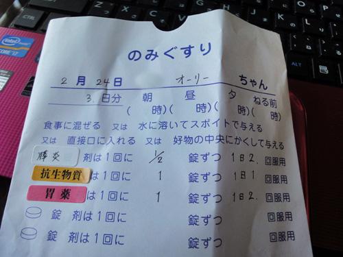 お薬袋0224