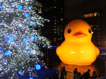 rubberduckinhotaru2DCIM0528.jpg