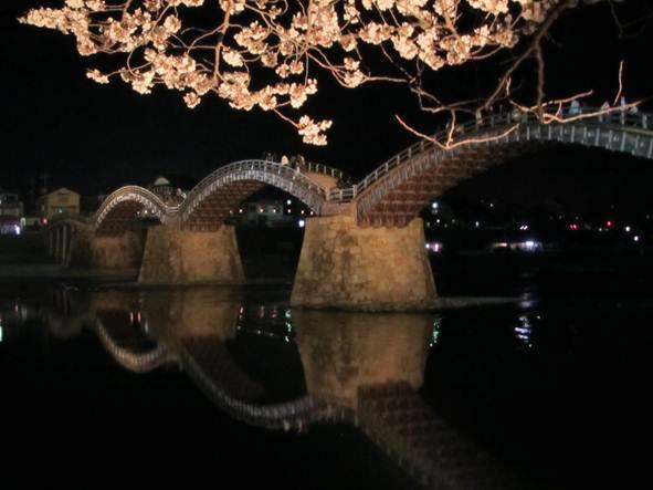 山口県岩国市 錦帯橋の桜
