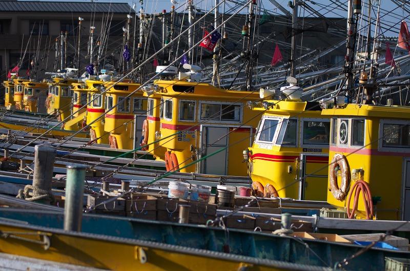 タチウオ漁で有名な箕島漁港