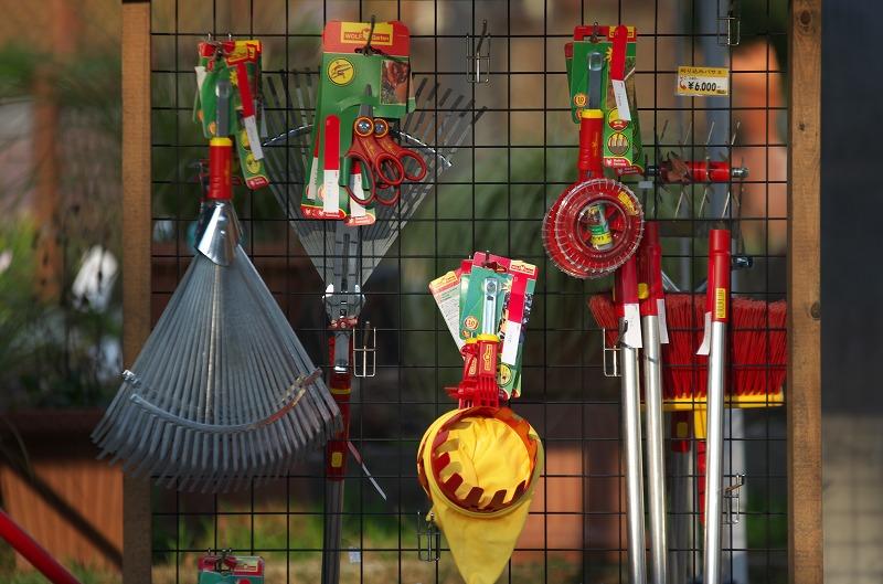 河内長野 花の文化園 冬 1月