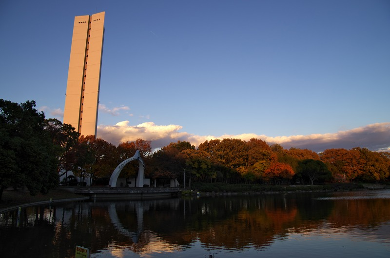 大仙公園 池