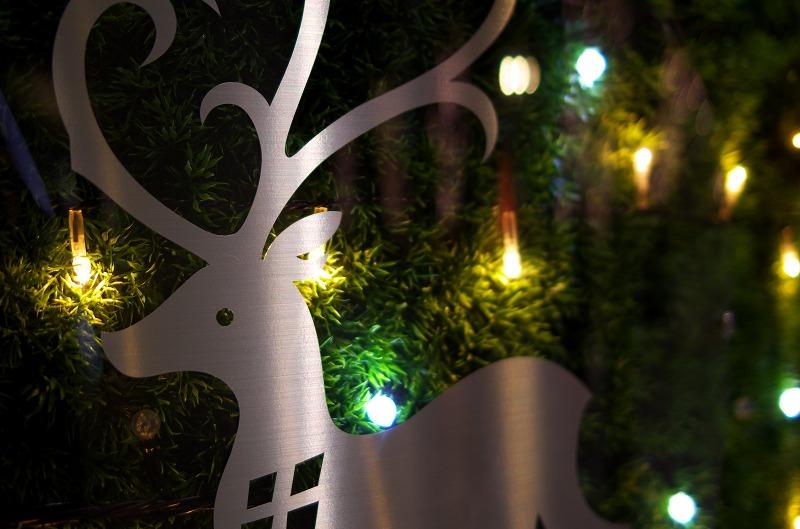 GRAND WISH CHRISTMAS 2013