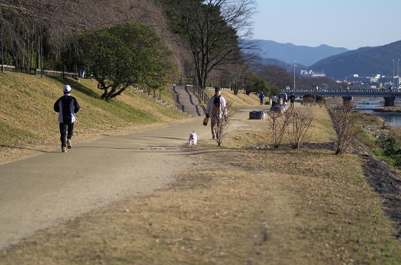 京都 鴨川公園 鴨川河川敷