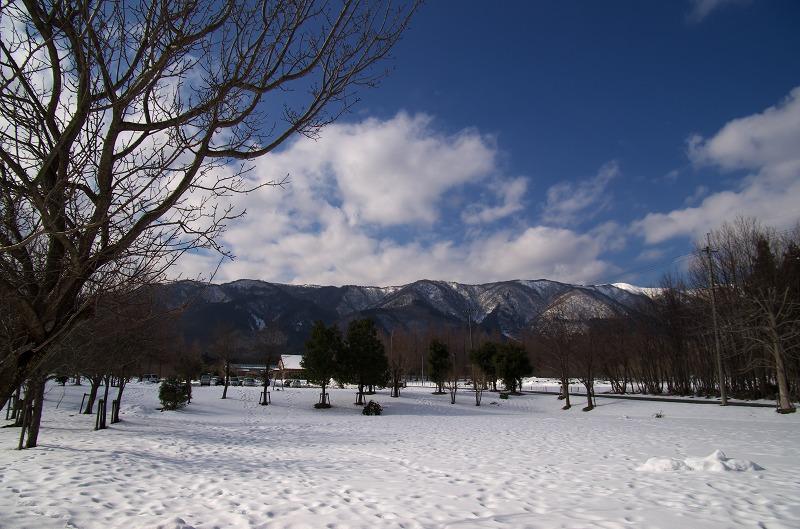 マキノ 雪原