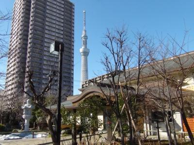 龍眼寺とスカイツリー