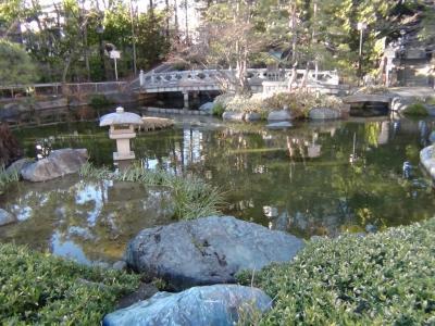美しく整備された庭