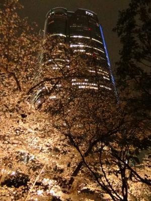 毛利庭園から見た森タワー