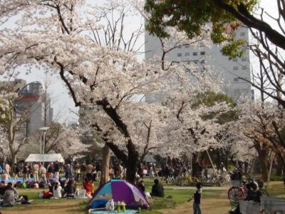 錦糸公園①