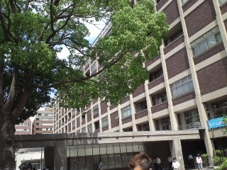 110722横浜市役所