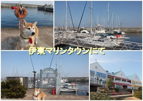 page 2011-02-16 伊東マリンタウン