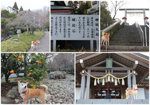 page 2011-02-16 神祇大赦