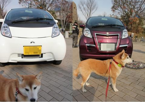 page 2011-01-29 鶴見緑地・日和マイカー?