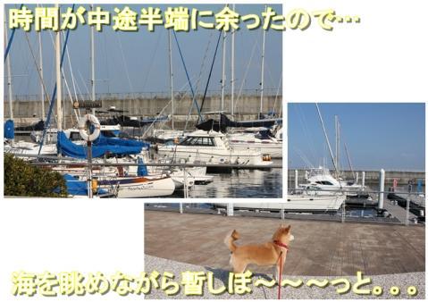 page_20110224222920.jpg