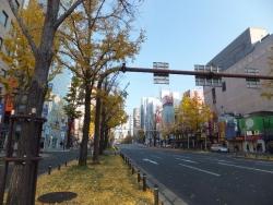 OsakaMarathon2013_003_org.jpg